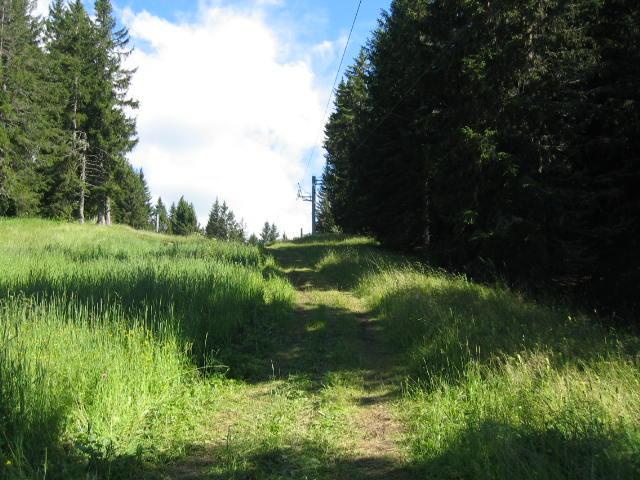 Entre les pylônes 1 et 2 avec la verte du Grand Bois à gauche
