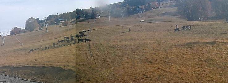 Images Webcams - Saison Hiver 2009/2010 Iw061