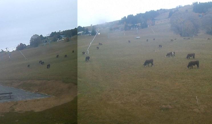 Images Webcams - Saison Hiver 2009/2010 Iw063
